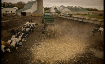 Winter is Coming – Prepare Bedding & Move Manure With Artex!