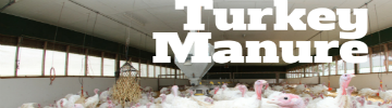 Facts About Turkey Manure
